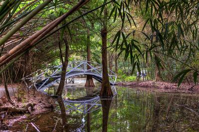 bamboo-bridge-swamp-hdr