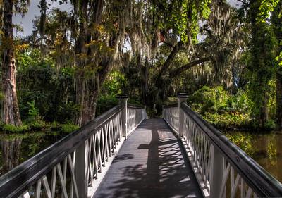 bridge-mossy-trees-hdr