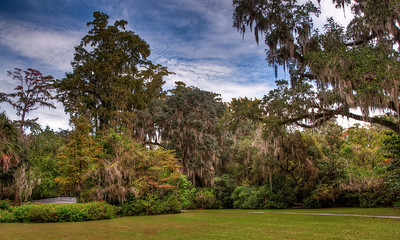 magnolia-plantation-grounds