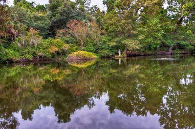 pond-garden-reflection
