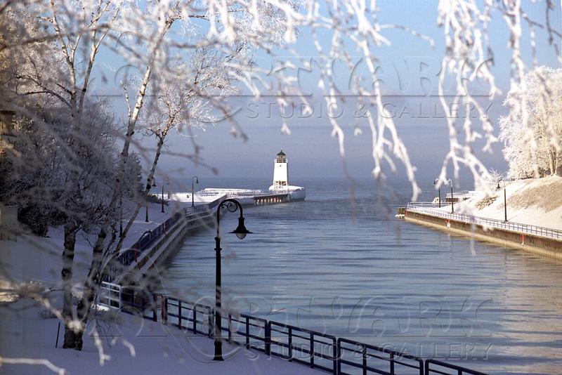 Pine River Frosty 2