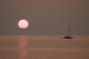 SunSet Sail 1