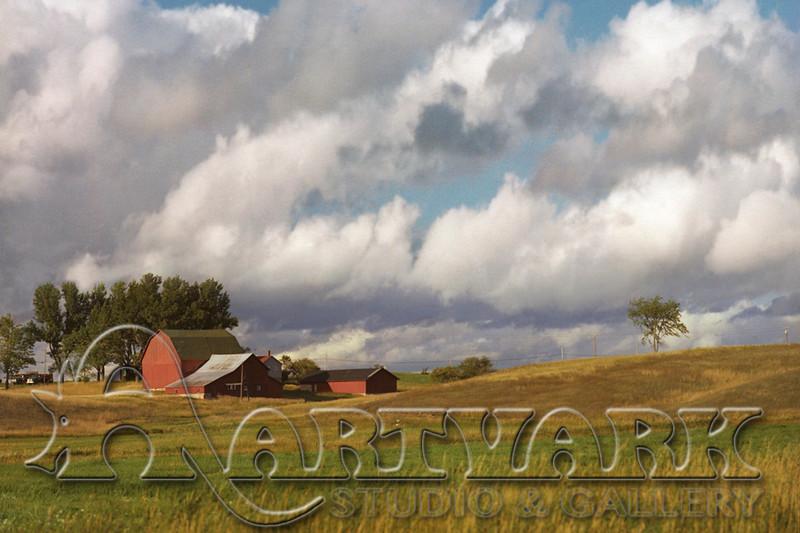 Gaylord Farm 1466