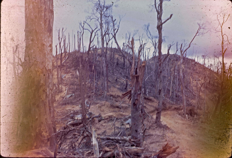 Hamburger Hill July 1969