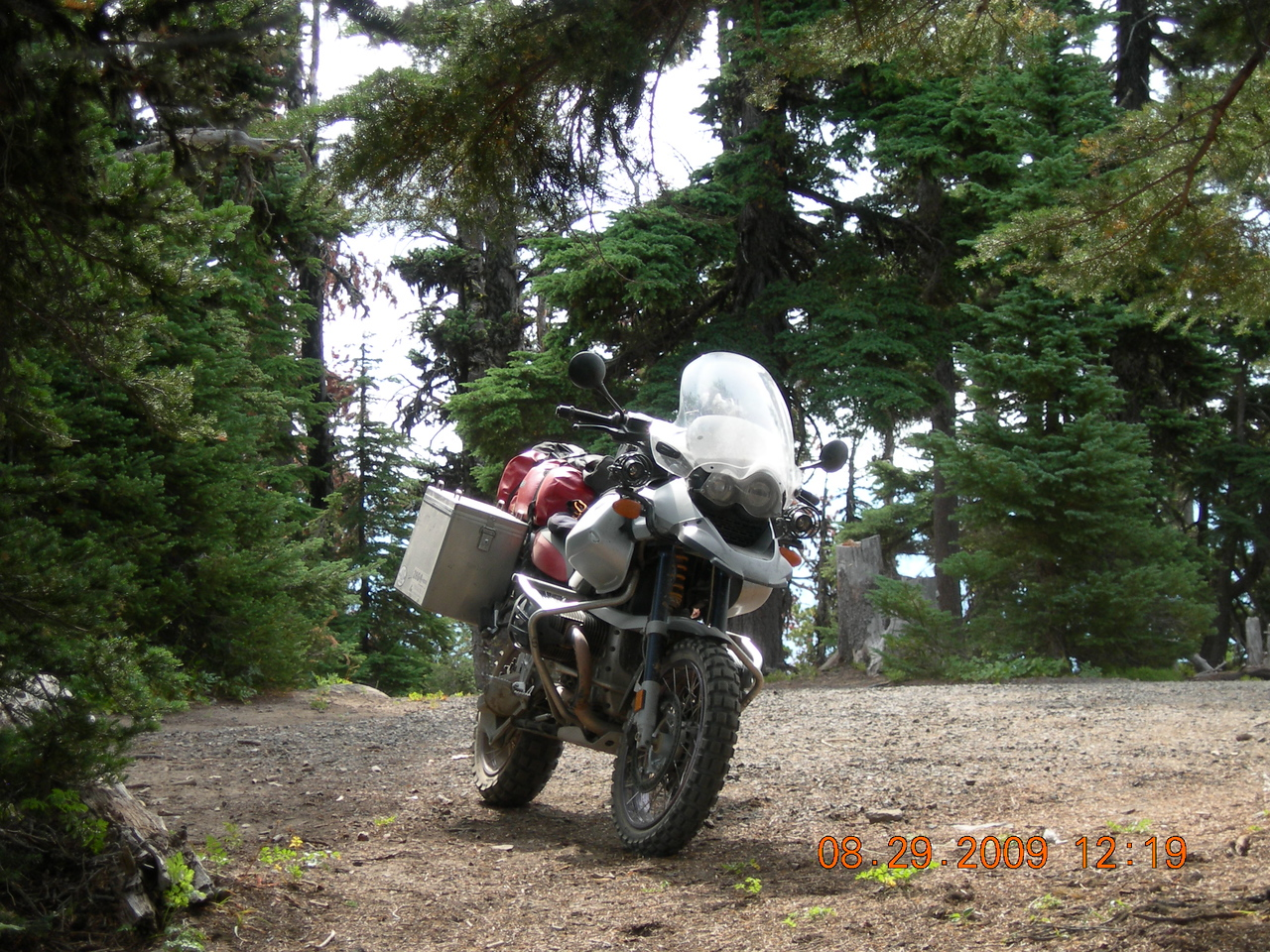 The big GS looking for a Sasquatch.