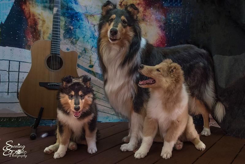 Charlie's Pups Week 8 & 9