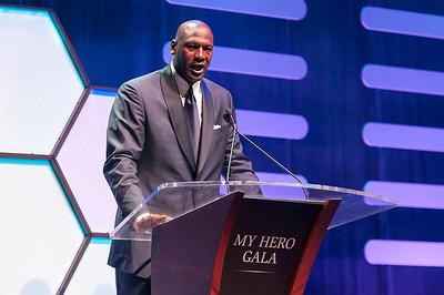 My Hero Gala 2015