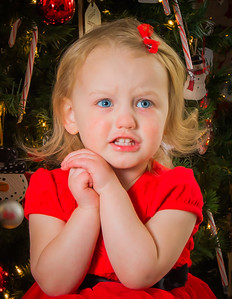 Charlotte and Lexi's Christmas pictures 2016-112