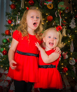 Charlotte and Lexi's Christmas pictures 2016-120