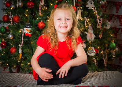 Charlotte and Lexi's Christmas pictures 2016-103