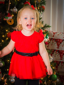 Charlotte and Lexi's Christmas pictures 2016-117