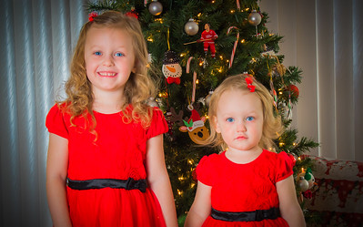 Charlotte and Lexi's Christmas pictures 2016-116