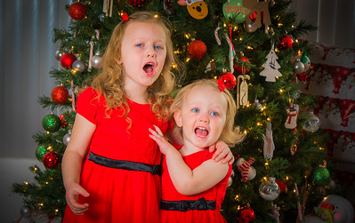 Charlotte and Lexi's Christmas pictures 2016-119