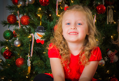 Charlotte and Lexi's Christmas pictures 2016-105
