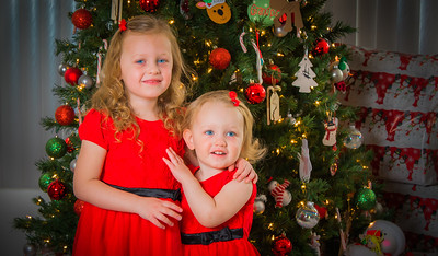 Charlotte and Lexi's Christmas pictures 2016-122
