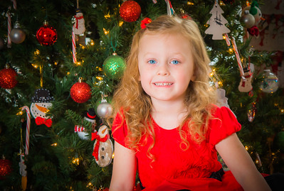 Charlotte and Lexi's Christmas pictures 2016-101