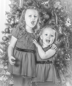 Charlotte and Lexi's Christmas pictures 2016-121