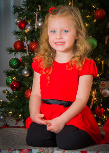 Charlotte and Lexi's Christmas pictures 2016-110