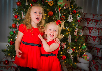 Charlotte and Lexi's Christmas pictures 2016-118