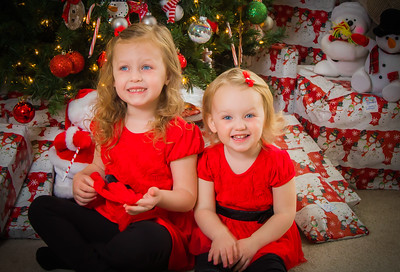 Charlotte and Lexi's Christmas pictures 2016-100