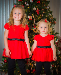 Charlotte and Lexi's Christmas pictures 2016-115