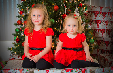 Charlotte and Lexi's Christmas pictures 2016-108