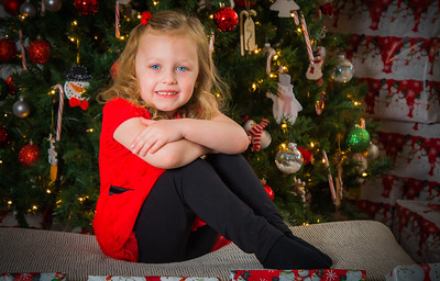 Charlotte and Lexi's Christmas pictures 2016-104