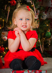 Charlotte and Lexi's Christmas pictures 2016-111