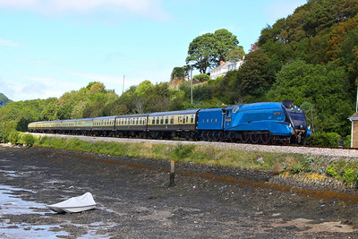 "4464 Bittern arrives into Kingswear passing the Royal Britannia Crossing on the: 1Z27 09:15 Bristol Temple Meads to Kingswear ""The Torbay Express""  19/08/12  Watch the video at: http://youtu.be/Aa-x1MtCfQE"