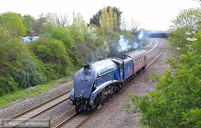 60007 Sir Nigel Gresley with support coach 21096 heads west through Creech St Michael near Taunton working: 5Z32 05:45 Southall to Taunton 19/04/14  Watch the video at: http://youtu.be/mIGVobTuVT8