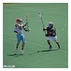 Clams 2010 IMG_8450 Harvard1