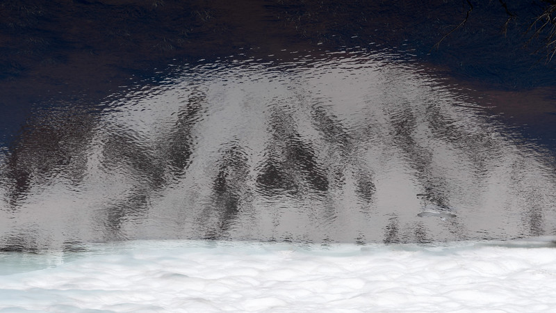 Reflecton of Mt. Rainier