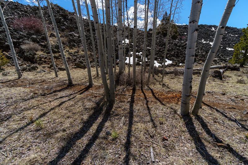 Birch Spring Knoll