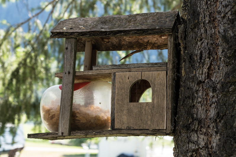 Squirrel feeder, apparently they like corn flakes.