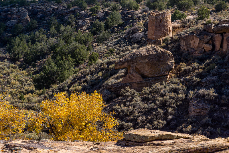 Hovenweep NM