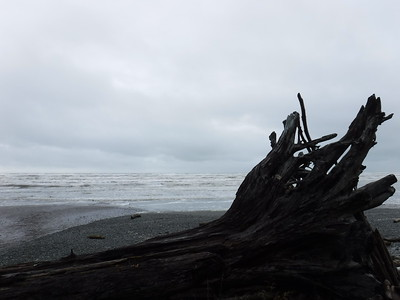The sea was raging a little, thwarting my hopes of whale watching for a bit (the gray whales are migrating just about now)