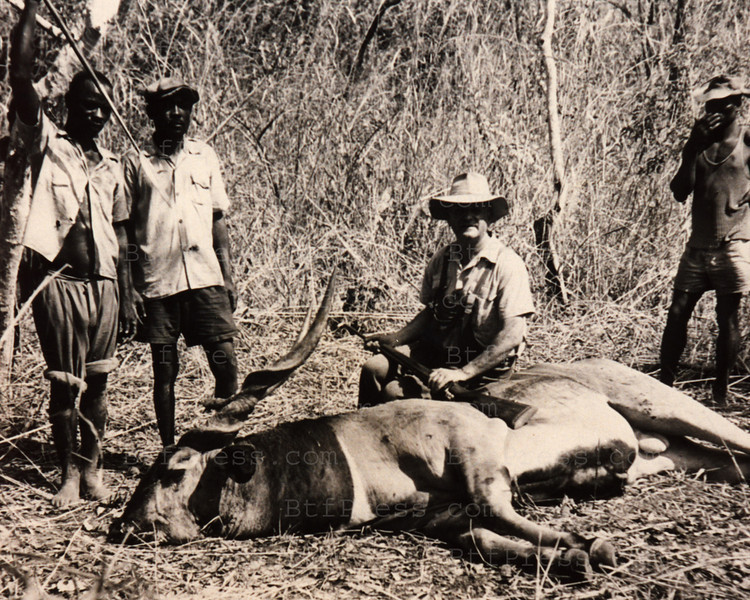 Great hunting Afriquaine in kenya in 1950 the hunters pose in front of the dead animals.