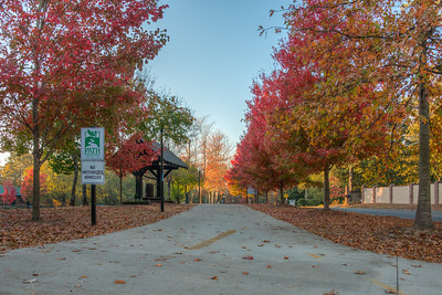 PATH Chastain Park Fall 2016