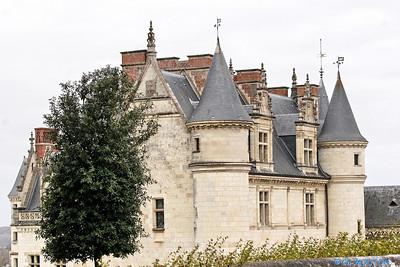 Chateau d'Amboise 3652 C-Mouton