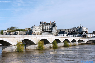 chateau amboise 2083 C-Mouton