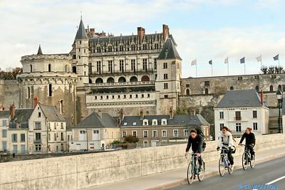 Chateau d'Amboise 3680 C-Mouton