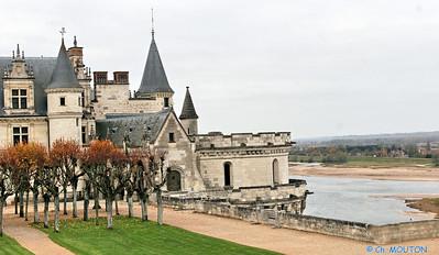 Chateau d'Amboise 3659 C-Mouton