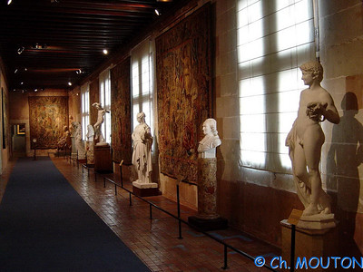 Blois Chateau Interieur 003 C-Mouton
