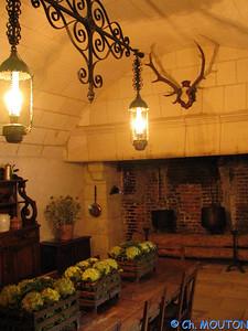 Chenonceau interieurs 14 C-Mouton