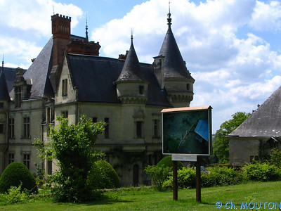 Chateau de la Bourdaisière 19 C-Mouton