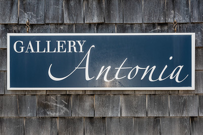 Gallery Antonia Tenth Anniversary-4