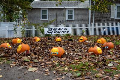 Pumpkin People 2020-2