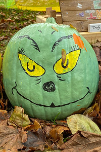 Pumpkin People 2020-15