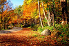 Smoky Mountain - Fall time