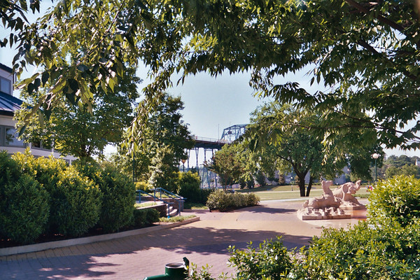 2004 Chattanooga Walk Photos